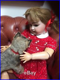 Extremely rare Antique bisque doll Simon Halbig DEP very big with her Steiff dog